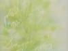 190 林 綾子 「Leaves」